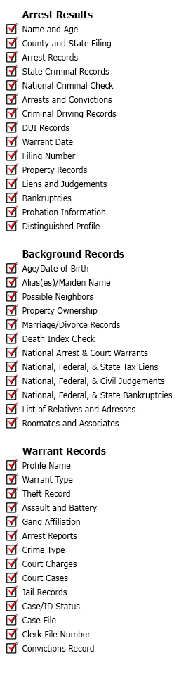 warrants driving criminal records background check